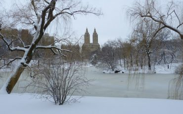 Winter in Central Park in New York City