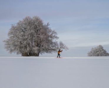 cross-country-skiing-2215179_1920