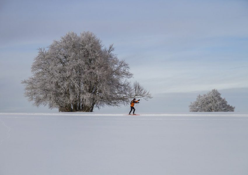 cross-country-skiing-2215179_1920